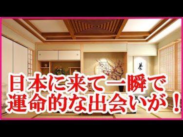 海外の反応 日本に来た外国人が一瞬で恋に落ちた!その衝撃的な出会いで今や超親日家に・・【世界が感動する日本の力】