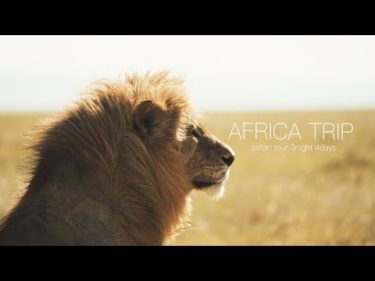 【VLOG】アフリカ旅 〜キャンプ・サファリツアー〜