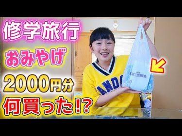 修学旅行で行った日光のおみやげ2000円分何買った!?家族へのおみやげ紹介♪