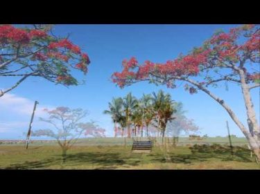 【旅エイター 旅行記】オセアニア・島国の旅『島国・フィジーのホテル』 フィジー