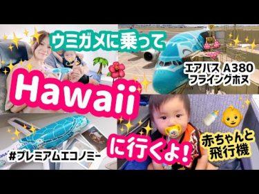 【ハワイ旅行】ANAのフライングホヌに乗ってハワイに行くよ🌺✈️